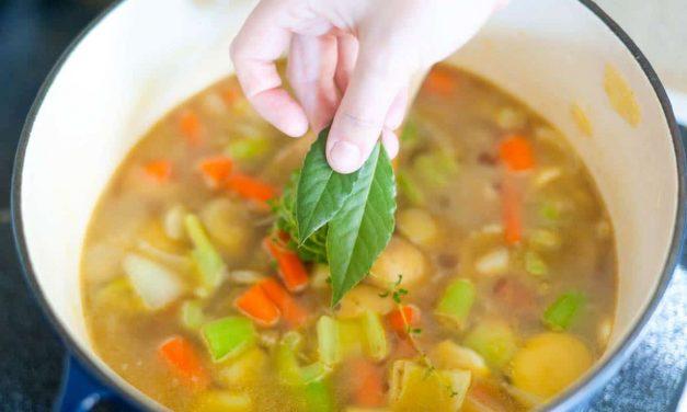 What is vegetarian vegan meal