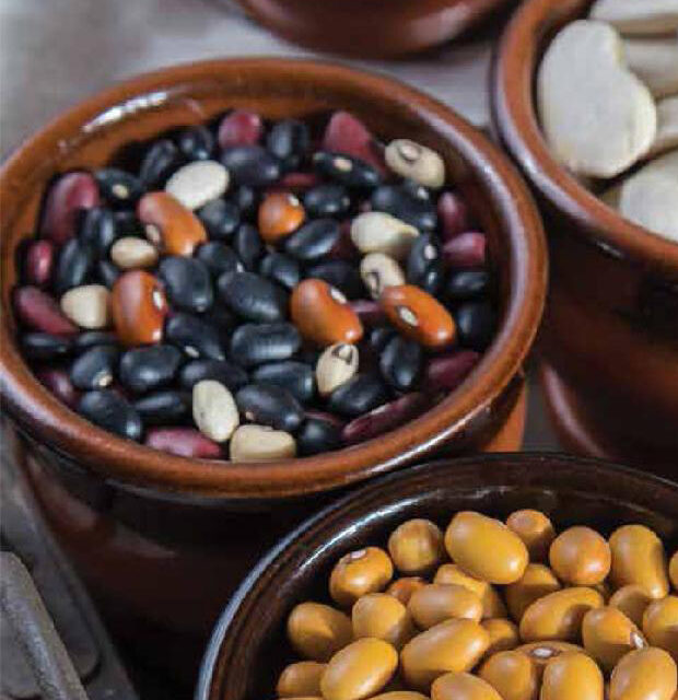 A PERFECT POT OF DRIED BEANS