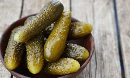 Pickled cucumbers and gherkins in horseradish vinegar